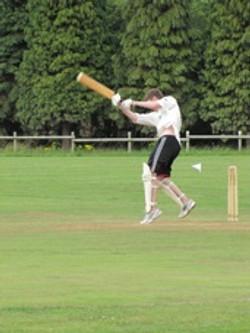 Cricket2010-17