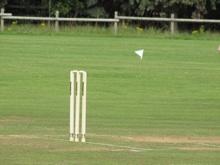 Cricket2010-3