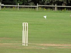 Cricket2010-31