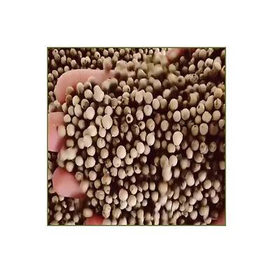 pepe in grani.jpg