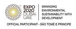 logo expo 2020 1.jpg