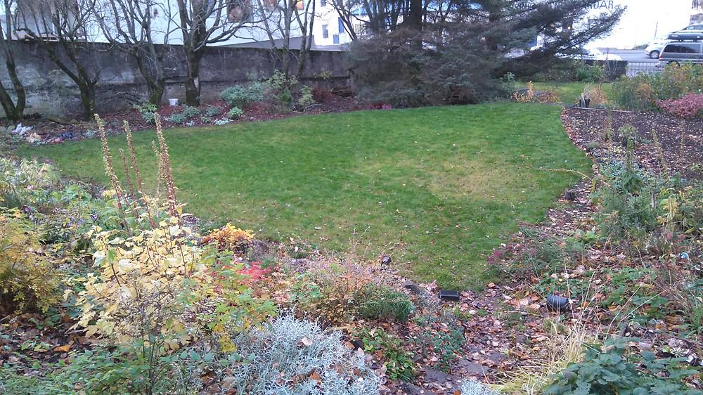 Fall garden.