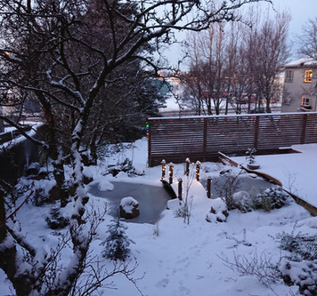 Gardening in Iceland on the Wix App