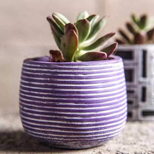 Small Round Planter with Horizontal Lines