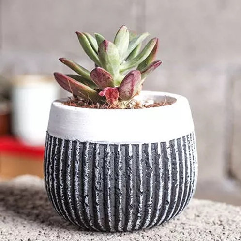 Small Round Planter with Vertical Lines