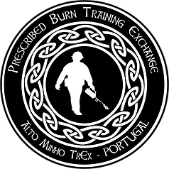 Logos TrEx_Alto Minho.png