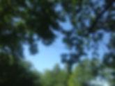 Valeurs 2.jpg