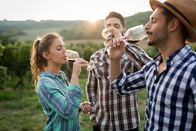 Happy people tasting wine in vineyard.jp