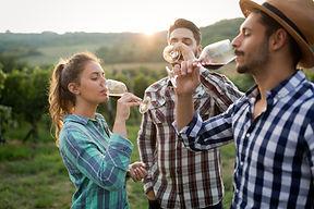 Happy people tasting wine in vineyard.jp