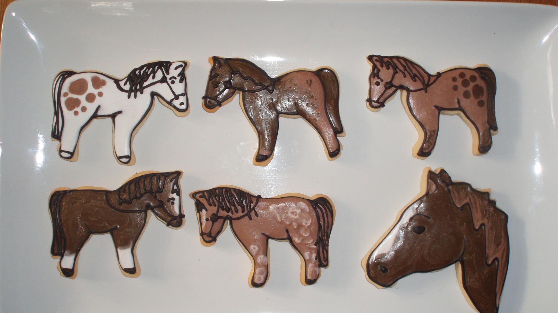 Flickr - Horses1