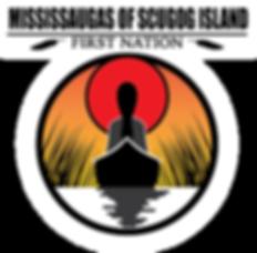 MSIFN LogoSmall.png