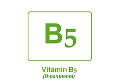 Vitamin B5 Final.png
