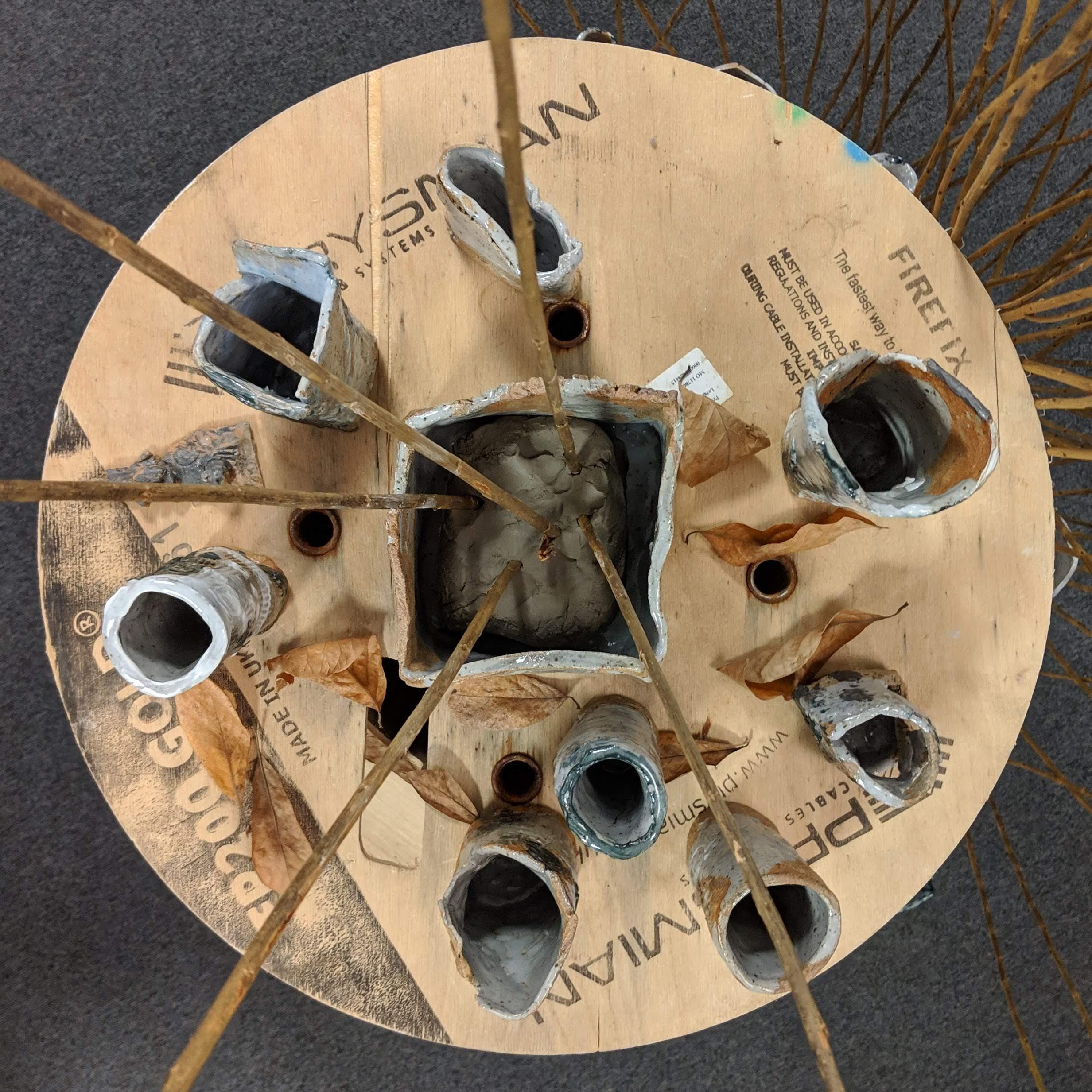 Fuchsia Project