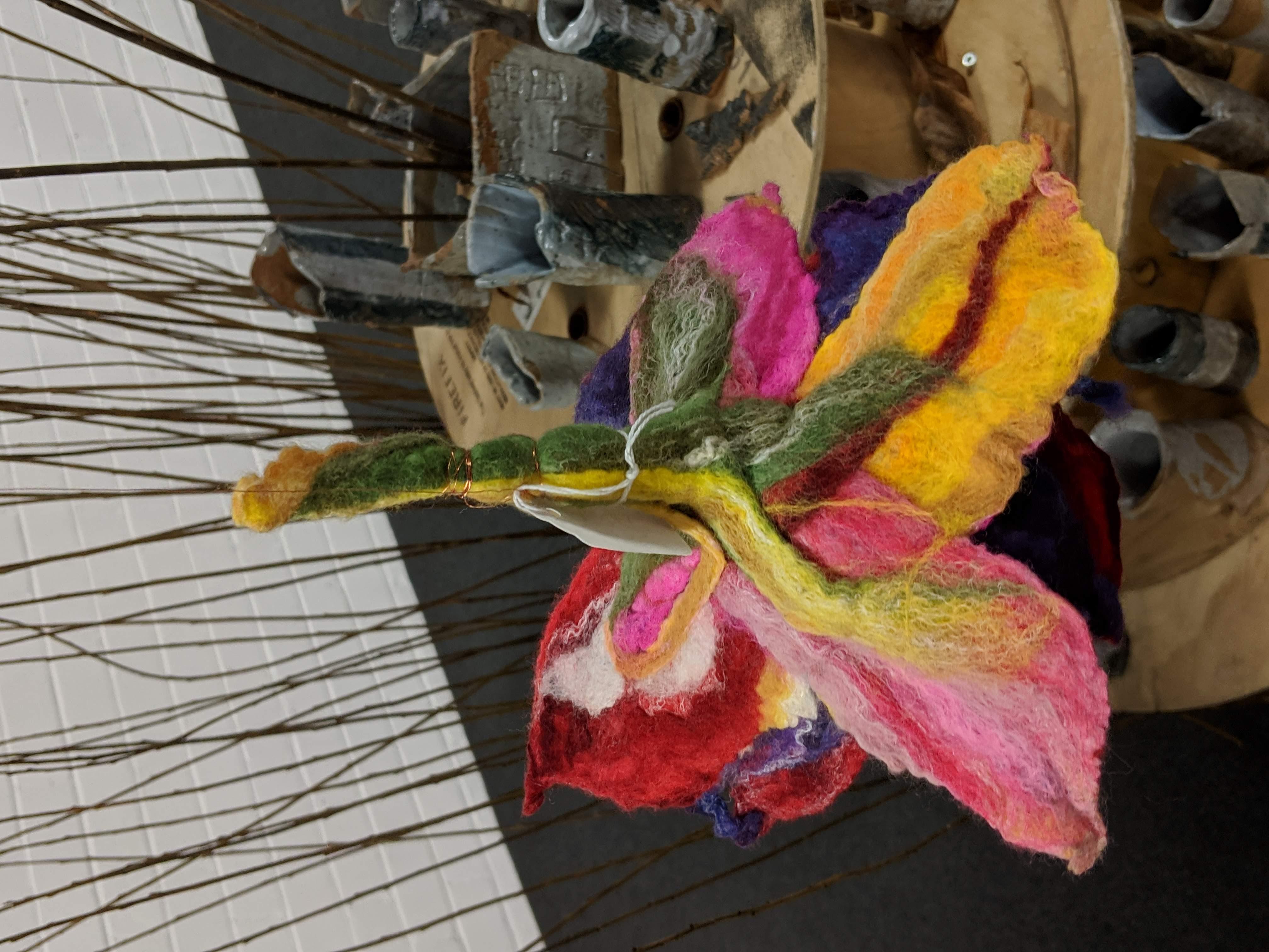 A giant fuchsia