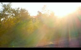 Screen Shot 2020-09-19 at 10.00.18 PM.pn
