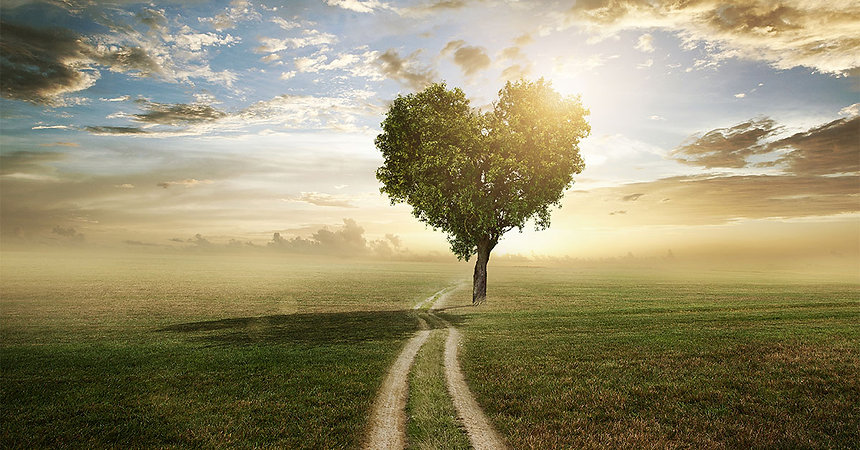 Heart-shaped+tree+with+path...for+MWM.jpg