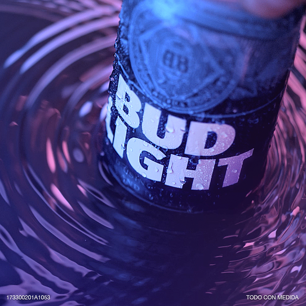 Bud Light Intrínsecos