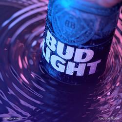 Bud Light Intrínsecos