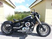 motorcycle detailer