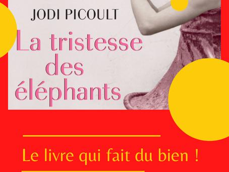 Le livre qui fait du bien : La tristesse des éléphants