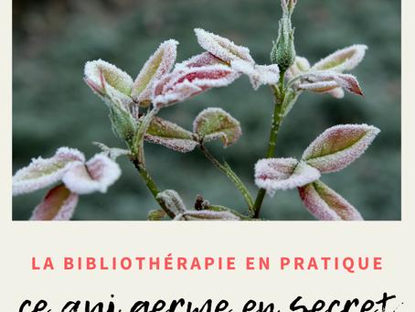 La bibliothérapie en pratique : Ce qui germe en secret
