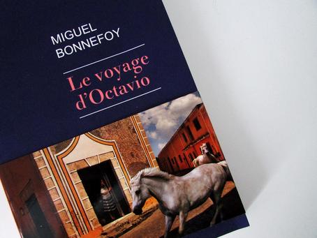 """Dans la bibliothèque de la bibliothérapeute : """"Le voyage d'Octavio"""""""