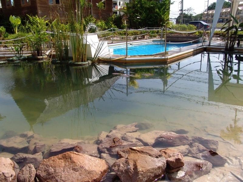 плавучий бассейн (36)