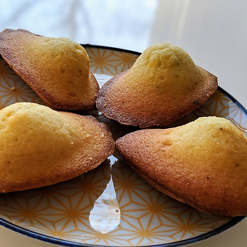 Madeleine -French Butter Cake- (x6)