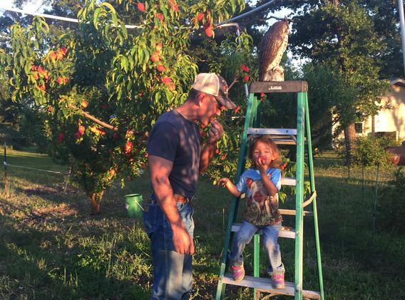 enjoying fresh peaches