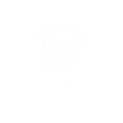 valhalla new logo.png