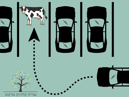 הפרה במגרש החנייה