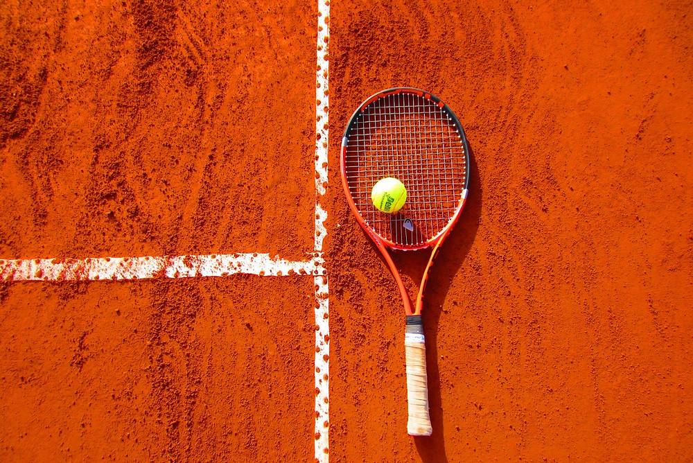 sports - compatible companion