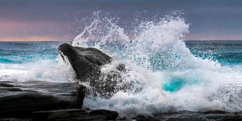 Dolphin Rock