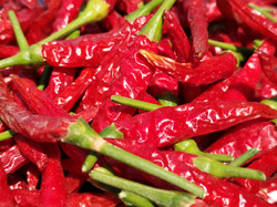 Hand Picked Chillis