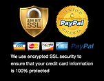 SSL Paypal Security.png