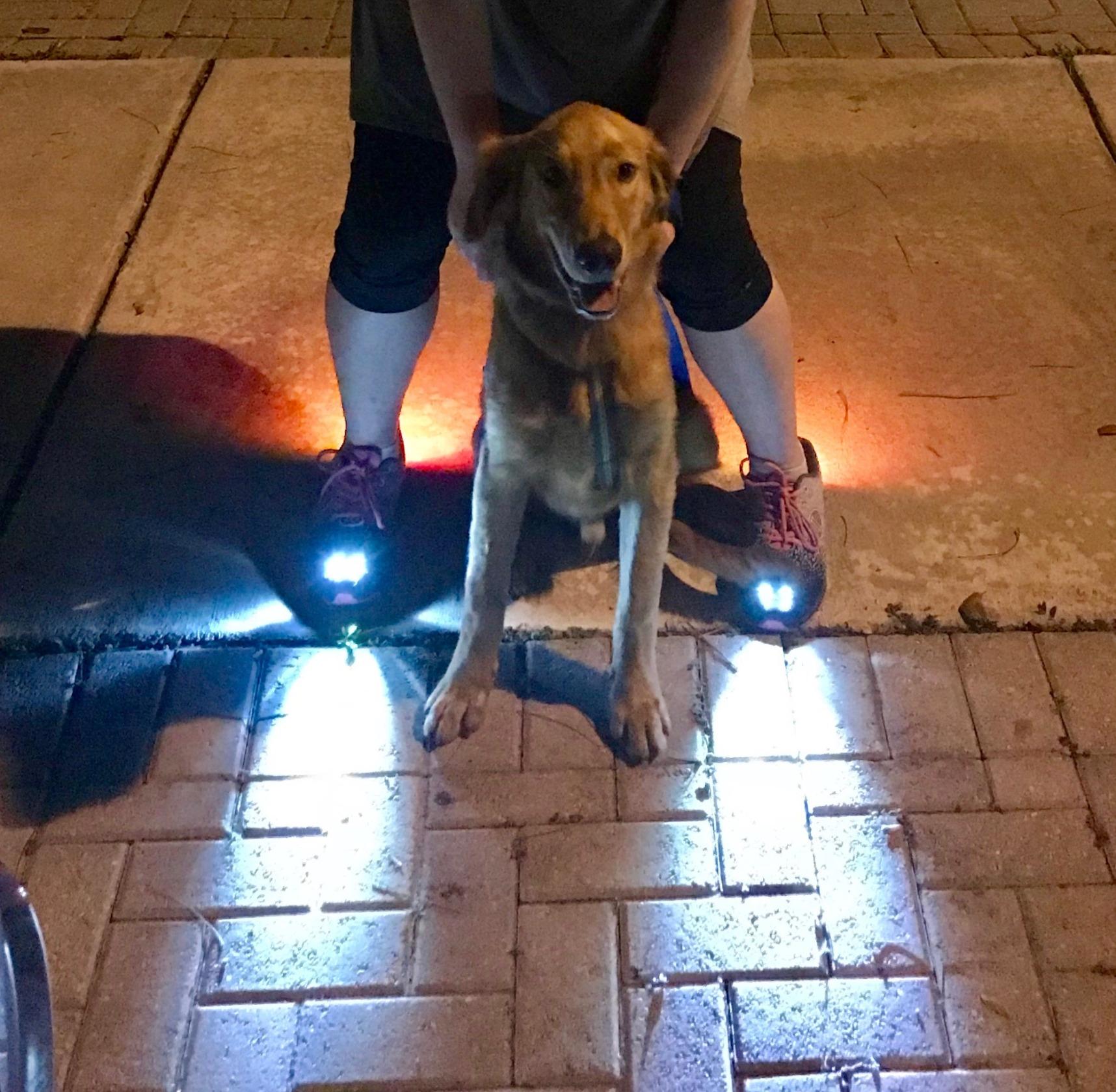 Women's LED Shoe Headlights