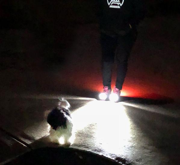 Night Runner-Night Walking-shoes.jpg