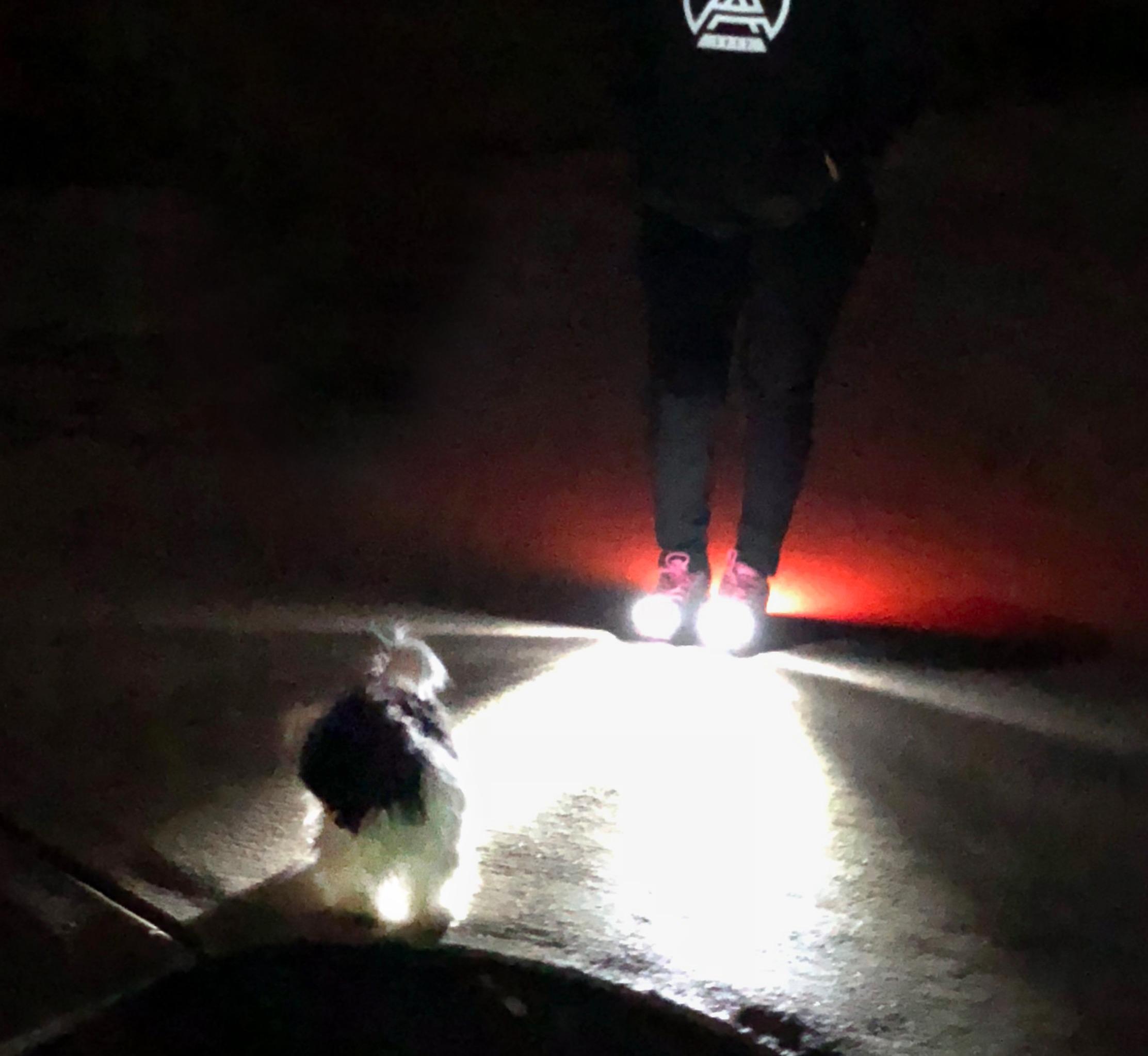 Women's LED Shoes-Night Runner