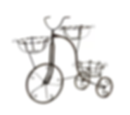 Chaplin Tricycle Plant Stand.png