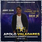 CAPA OFICIAL APOLO VALADARES.jpg
