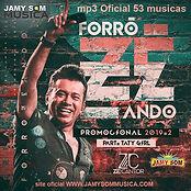 ZÉ_CANTOR_FORRÓZEANDO_MP3.jpg