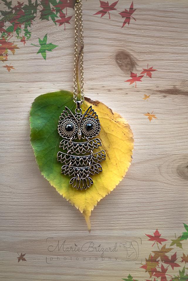 jewellery owl