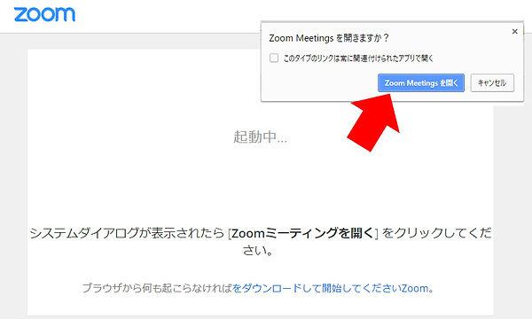 start_zoom.jpg