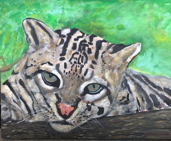 """* Claudia Gray """"OCELOT EYES"""" Acrylic 16x20 $895"""
