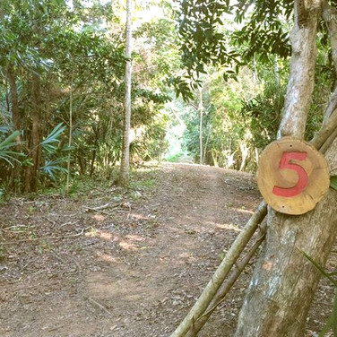Hole 5
