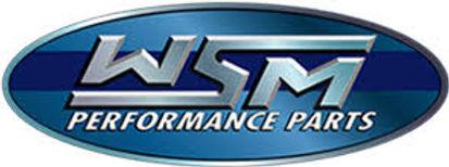WSM Logo.jpg