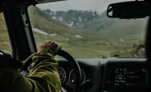 Prepare dog road trip - Car interiors