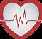 ANIMA LIFE - Cursos de Emerências Médicas pra Profissionais e Leigos