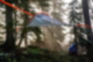 tentsile-flite-tree-tent.jpg
