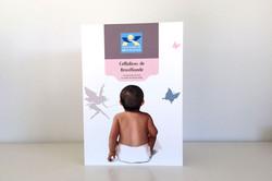 Celluloses_de_broceliande_plaquette-couv